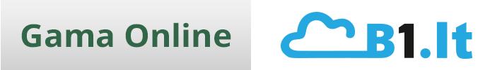 B1.lt tam tikrų funkcijų palyginimas su Gama Online